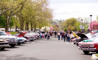 dogwood-festival-lewiston-idaho