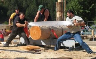 lumberjack-days-orofino-idaho